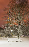 Snowy chair in park at night in Tallinn, Estonia Stock Photography