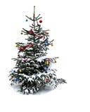 Snowy Chrismas tree isolated on white background Stock Photos