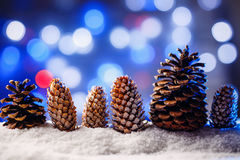 Snowy christmas background with fir and pine cones. Royalty Free Stock Photos