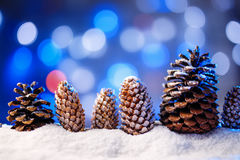 Snowy christmas background with fir and pine cones. Stock Photography