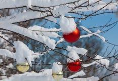 Snowy christmas balls Stock Photo