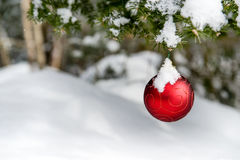 Snowy Christmas Decoration Hanging off a Tree Stock Photo