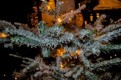 Lovely Snowy Christmas holiday tree Stock Photography