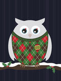 Snowy christmas owl. Snowy owl wearing a christmas sweater perched on branch Royalty Free Stock Images