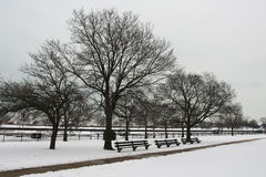 Snowy on christmas time in Chicago Stock Image