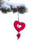 Snowy christmas tree red heart ornament isolated. Single red heart shaped Christmas or Valentines decoration hanging from snow covered winter branch of pine tree Stock Images