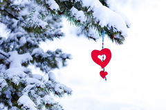 snowy christmas tree red heart ornament. Single red heart shaped Christmas or Valentines decoration hanging from snow covered winter branch of pine tree  on Stock Photos