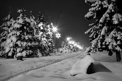 Snowy city. Snowy night czech city Havirov with trees and bench stock photography