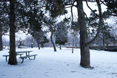 Snowy City Park Royalty Free Stock Photos