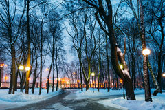 Snowy city park in the light of lanterns at evening in Gomel, Be Stock Images