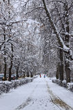 Snowy city street, vertical stock images