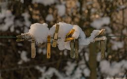 Snowy Clamps. A picture of a group of snowy cloth clamps royalty free stock photo