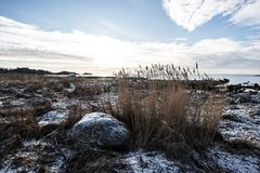 Snowy Coastline. In South Norway Royalty Free Stock Photo