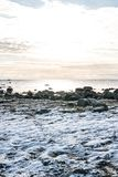 Snowy Coastline. In South Norway Royalty Free Stock Image