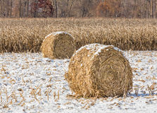 Snowy Cornstalk Bales. Round crop bales on the edge of a corn field are topped with a light snow fall in late autumn Royalty Free Stock Image