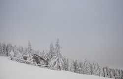 Snowy cottage in winter in black forest Stock Photo