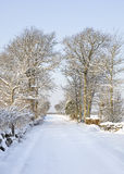 Snowy countrside road Stock Photography