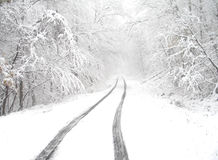Snowy country lane Royalty Free Stock Photo