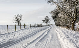 Snowy country lane in Cumbria Royalty Free Stock Photo