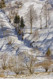 Snowy country lane Royalty Free Stock Photography