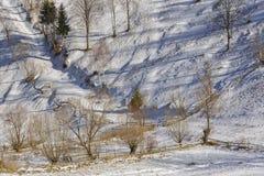 Snowy country lane Royalty Free Stock Photos