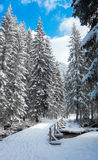 Snowy country Royalty Free Stock Images