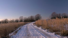 Snowy country road in forest stock footage