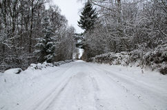 Snowy country road Royalty Free Stock Image