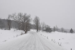 Snowy country road Stock Images