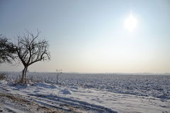 Snowy country in a sunny winter day Stock Photography