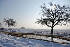 Snowy country in a sunny winter day Royalty Free Stock Photos