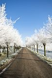 Snowy countryroad, in the Netherlands Stock Images