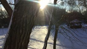 Snowy countryside on sunny day stock video footage