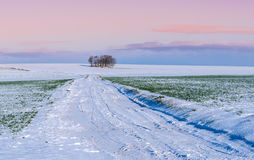 Snowy countryside Royalty Free Stock Photo