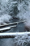Snowy Creek Royalty Free Stock Photo