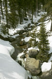 Snowy Creek Royalty Free Stock Photography