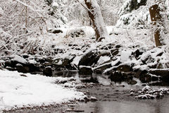 Snowy creek Royalty Free Stock Photos