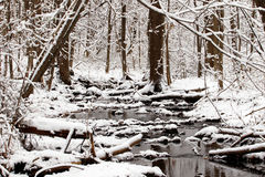 Snowy creek Stock Photos