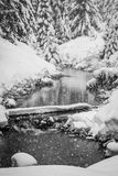 Snowy creek at Gold Creek Pond in Snoqualmie Pass Royalty Free Stock Photography