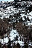 Snowy Creek. Photo of a snow covered creek winding through the Big Horns Royalty Free Stock Photo