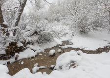 Snowy Creek Stock Images