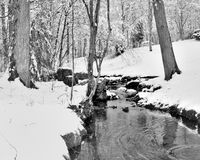 Snowy Creek Stock Photography