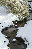 Snowy Creek. Snow on the banks of a small creek Royalty Free Stock Images
