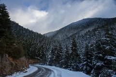 Snowy curved road on a mountain with fir trees on each side and clouds in the sky stock image