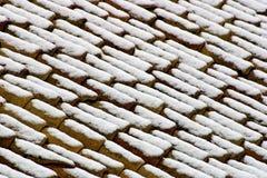 Snowy-Dächer lizenzfreie stockfotos