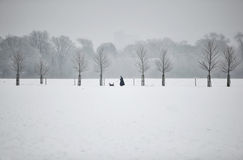 Snowy Day. A snow covered landscape with a man walking his dog in a distance royalty free stock images