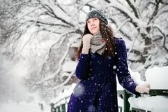 Snowy Day Royalty Free Stock Image
