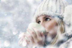 Snowy day Stock Image