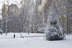 Snowy Day Central Park royalty free stock images