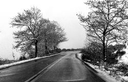 Snowy day at a mountain road in Ioannina Greece. A mountain road with trees and snow black and white Royalty Free Stock Images
